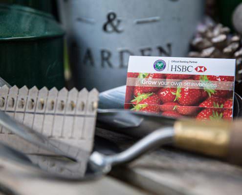 Seedstick HSBC