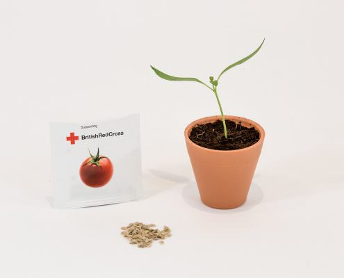Seed Packet Red Cross