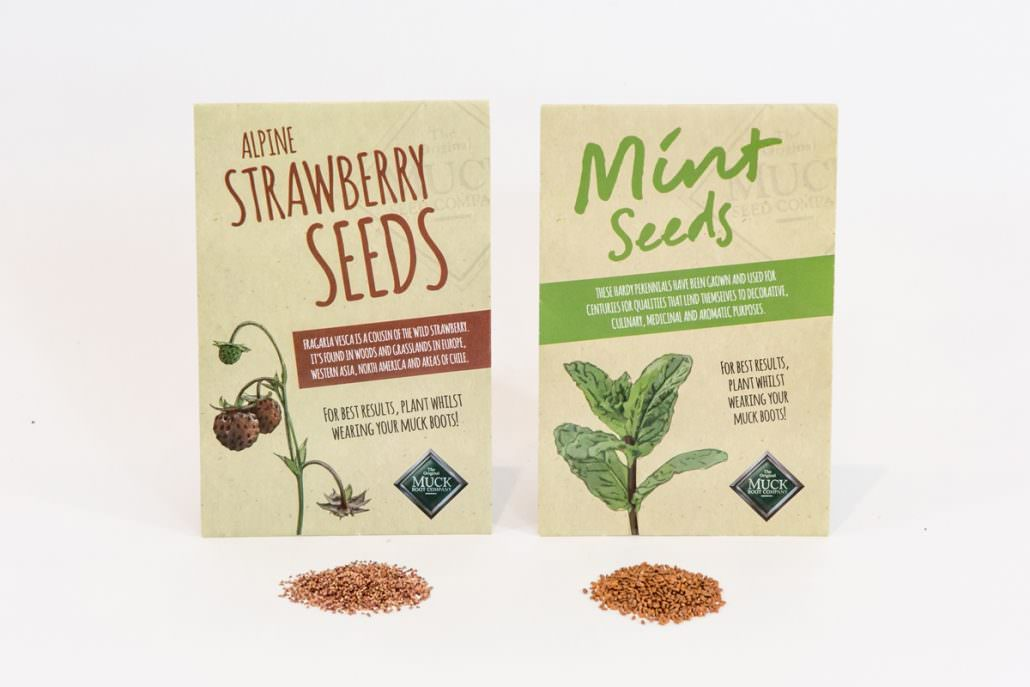 Sow Easy Summer Seeds