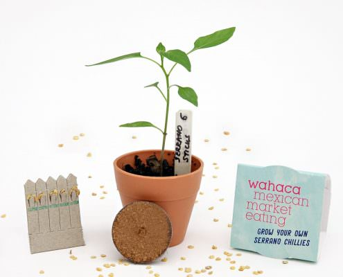 Wahaca Grow Kit