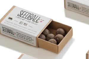 SeedBall Matchbox