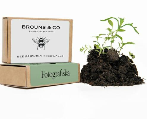 Custom Printed Seedball Matchbox with Growing Plant