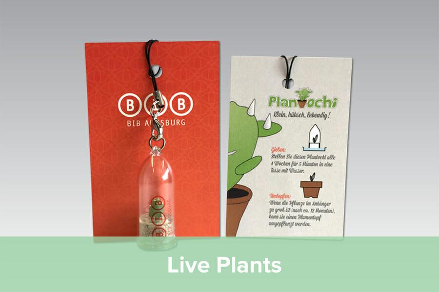 Promotional Live Plants